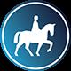 Lekce jízdy na koni